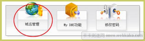 进入DNS管理
